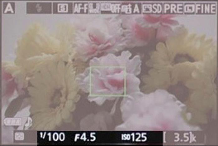 el triángulo de exposición con metadatos que nos muestra la pantalla de las cámaras réflex